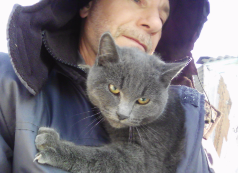 ВТроицке связисты спасли кота, забравшегося на6-метровую опору