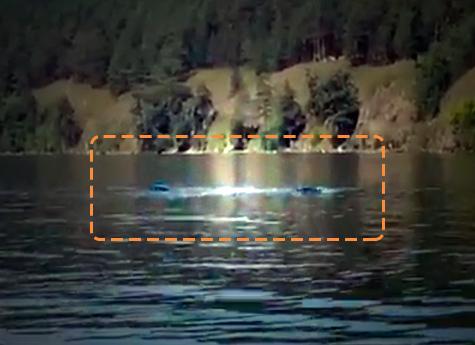 На озере Тургояк увидели гигантского водоплавающего змея